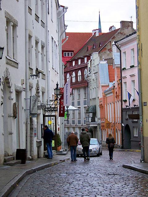 CACIB TALLIN WINNER 2012 Tallinn-4353