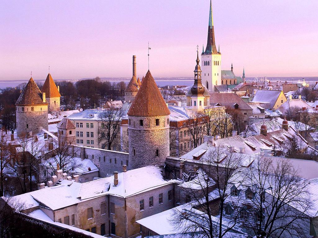 CACIB TALLIN WINNER 2012 Tallinn_Estonia