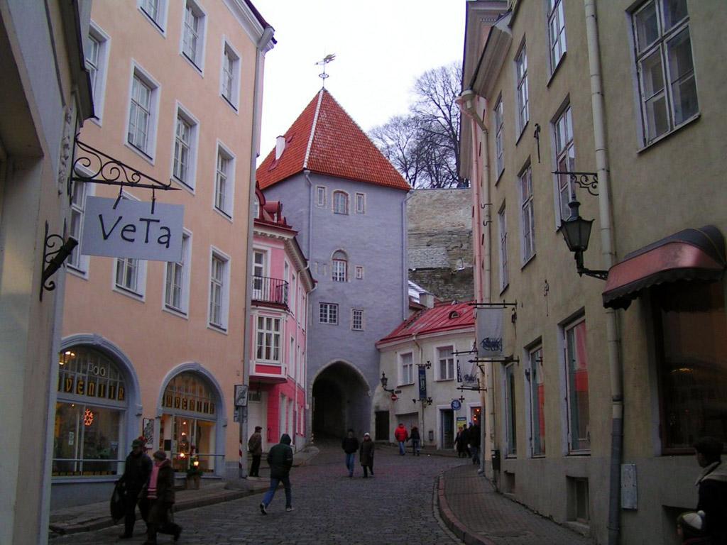 CACIB TALLIN WINNER 2012 Estonia_tallin_10